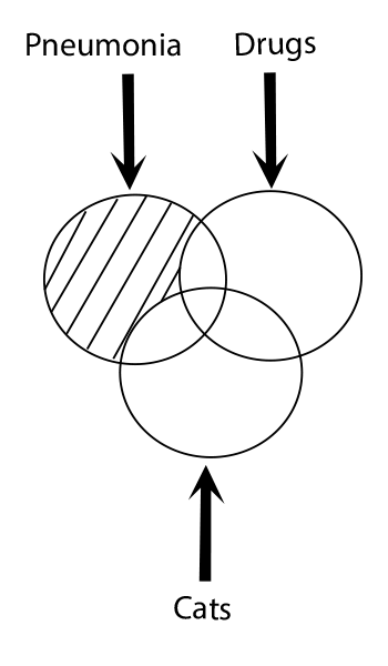 A sample of Logical Difference NOT or  - Search Logic | Types of Search Logic