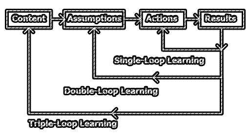 Levels of Organizational Learning