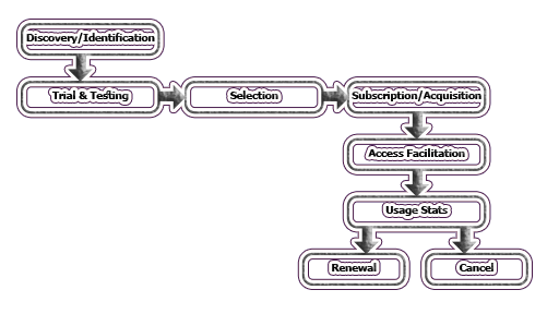 Life Cycle of Electronic Information Resources