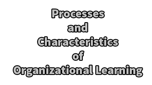 Processes and Characteristics of Organizational Learning